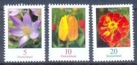 Alemanha - 2005-MINT - Flores.