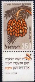 ISRAEL - AMÊNDOAS