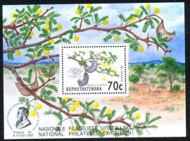 Bophuthatswana  - 1992 -MINT -Boco - Acacia - Espécie: Acacia erioloba, Família: Fabaceae, Subfamilia: Mimosaideae. Género: Acacia. ( O País é um bantustão criado pelo governo sul-africano. )